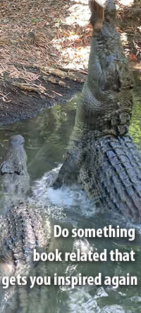 Do something book related that gets you inspired again. Crocodiles leap from water.